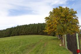 Pozemok (1100 m2) Oľšavka pri Spišských Vlachoch