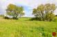 Stavebné pozemky (6074 m2), Levoča - 8