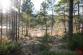 Lukratívny stavebný pozemok (1556 m2), Hôrka - Kišovce - 15