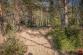 Lukratívny stavebný pozemok (1556 m2), Hôrka - Kišovce - 17