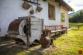 Dom pri lese Novoveská Huta - 29