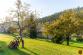 Atraktívne pozemky v blízkosti mesta Sp. Nová Ves - 12