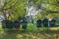 Rodinný dom s krásnym pozemkom v Levoči - 6