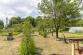 Dve záhrady (770 m2) pri sídl. Juh Poprad - 11