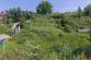 Záhrada (594 m2) Pri Vyšnej hati Sp. Nová Ves - 1