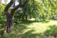 Pozemok (1 299 m2) so starším RD Levoča - 25