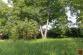 Pozemok (1 299 m2) so starším RD Levoča - 26