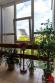 Byt 3+1 (82 m2), loggia a balkón sídl. Mier Sp. Nová Ves - 28