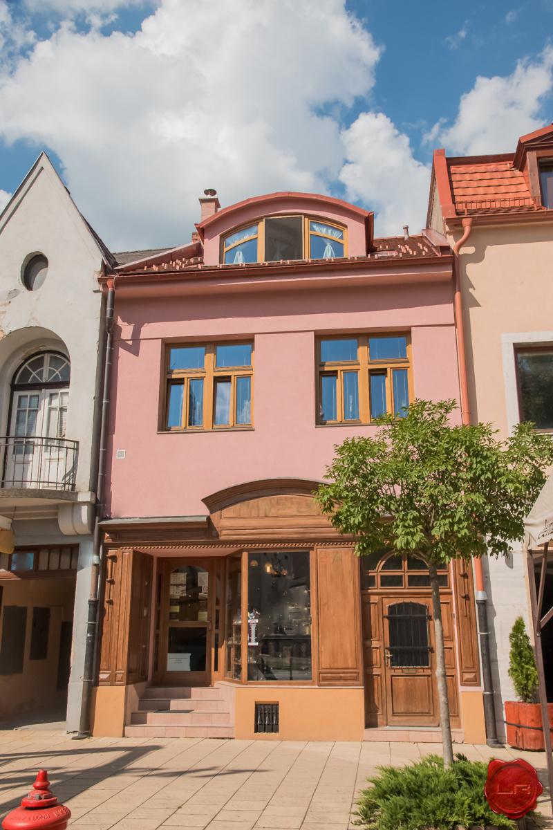 Meštiansky dom s polyfunkčným využitím, centrum Sp. Nová Ves